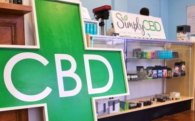 What to Look for When Choosing a CBD Store